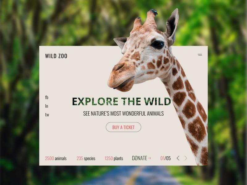 Zoo  Web sketch uxdesign uidesign landingpage web rainforest ux ui donate explore species plants buyaticket ticket zoo nature giraffe animals wildlife uiux
