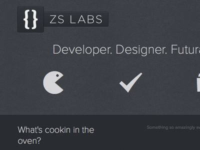ZS Labs css3 html5 responsive launched font-face proxima nova