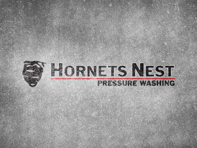 Hornet's Nest Pressure Washing | Logo logo identity pressure washing