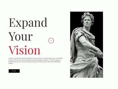 Expand Your Vision js webdesign css website design
