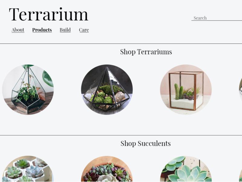 Terrarium minimal website web ux ui design