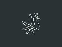 Marijuana Peacock