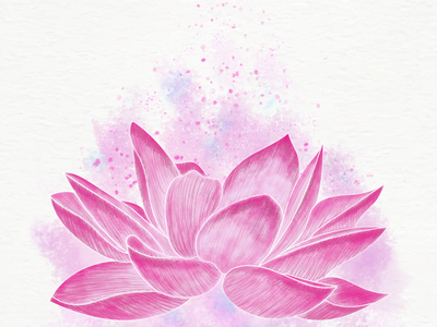 Lotus Illustration splatter pink lotus flower lotus linework watercolor brush texture flowerillustration flower illustraion botanical illustration botanical digital illustration digital art digitalart adobe photoshop digital