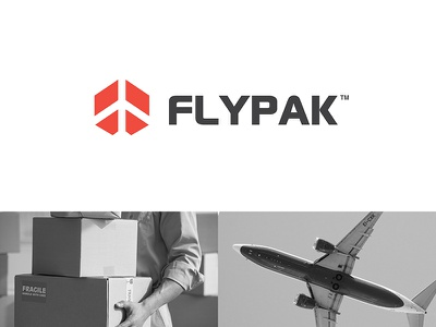 Flypak box fly plane negativespace monogram logo