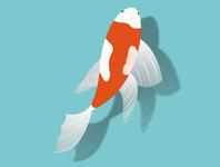 Fish Illustration - Lockdown Work