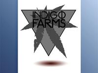 Indigo Farms