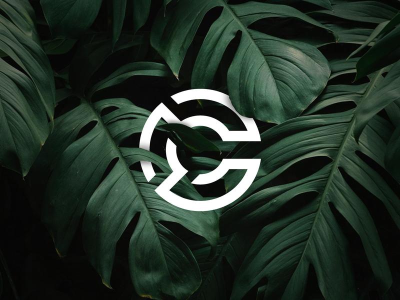C Lettermark sketch web ui vector minimal illustration graphic  design flat design concept clean branding art app adobe illustrator abstract dribbble 2d icon logo