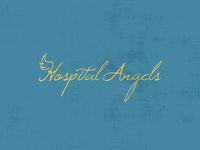 Hospital Angels
