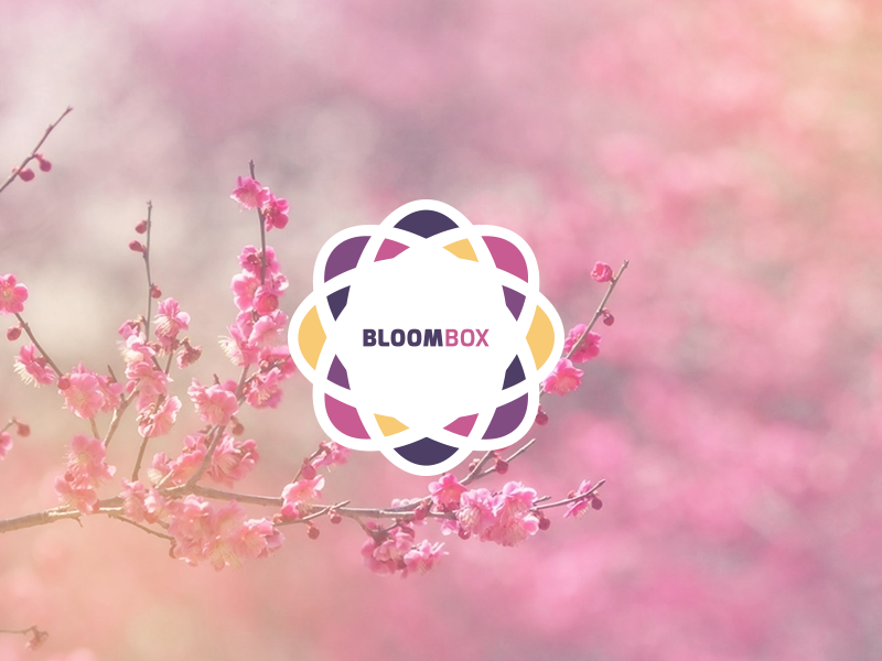 Bloombox logo branding symmetry flower florist floral