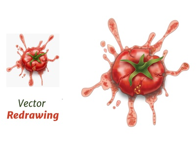 Tomatoo Vector Drawing