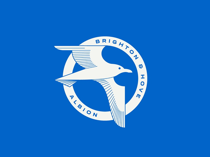 Brighton & Hove Albion seagull hove brighton england sports logo badge crest soccer football