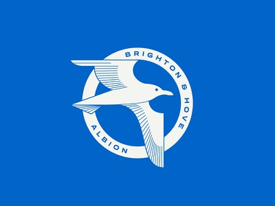 Brighton & Hove Albion seagull hove brighton england sports logo badge crest soccer football
