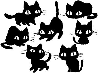 Kitten of various
