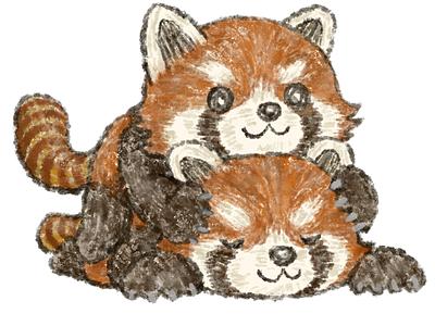 Overlapping red pandas animals illustration red panda