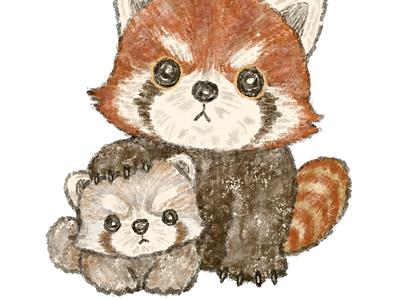 Red panda family panda character pets illustration animals red panda