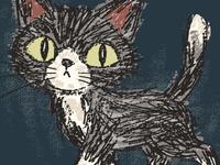Rough Sketch Of A Cat