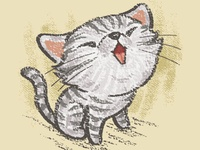 American Short Hair Kitten In A Good Mood