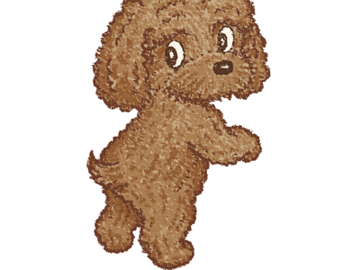 Toy-Poodle poodle puppy dog pet animal illustration characters vector
