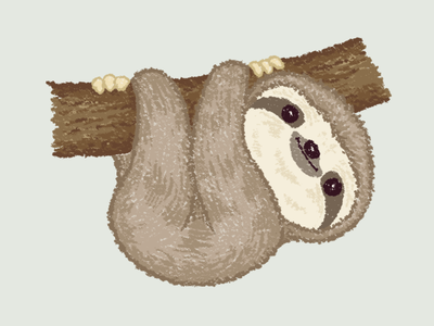 Sloth On The Tree sloth animal illustration characters vector