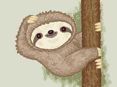 Shy sloth sloth pet animal illustration characters vector