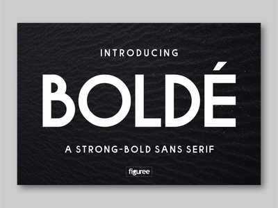 BOLDE fonts typography simple font bold font sans serif sanserif sans font awesome font family font design