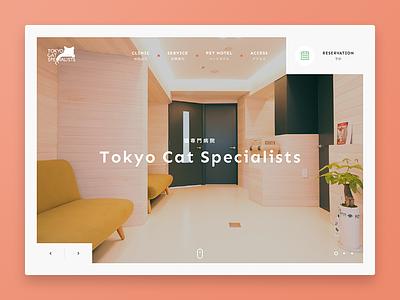 Tokyo Cat Specialists grid ui green orange white website webdesign clean