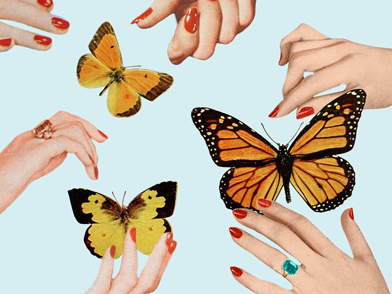 Social Butterflies retro social hands butterfly design graphic design vintage collage