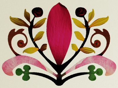 Rochelle Adonis Flourish flourish identity flower