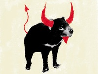 Horny Tasmanian Devil poster design
