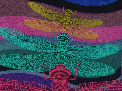 Chasing dragonflies dream illustration digital art trippy dragonflies
