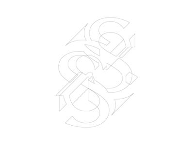 MistakeS shape line black  white white black typogaphy s wip
