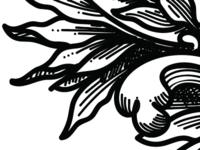 vector etching