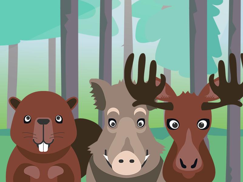 Woodland creatures abstract animal cartoon illustration