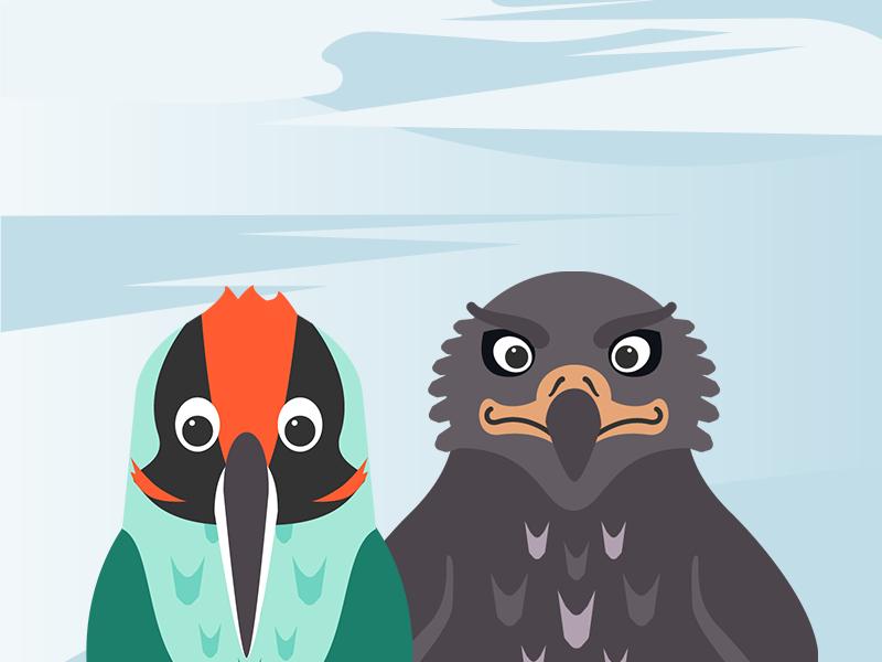 Birds birds abstract animal cartoon illustration
