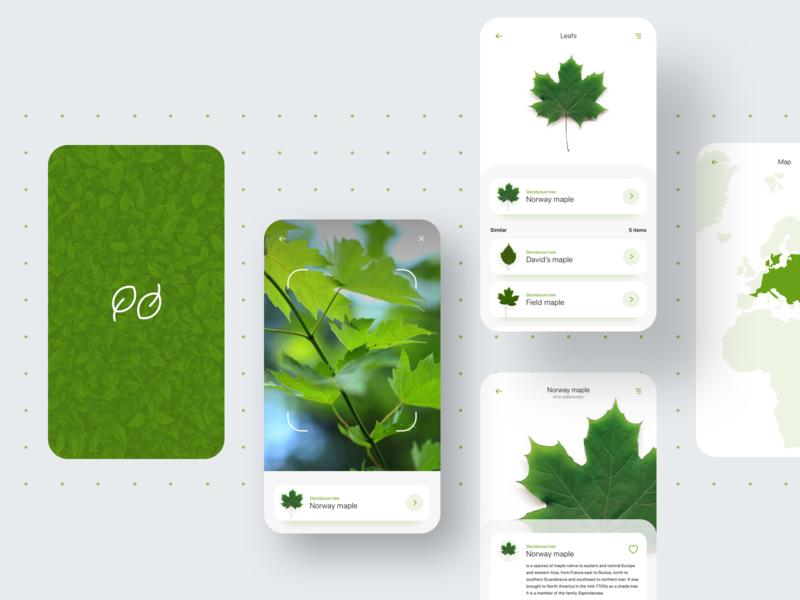 Leafs - mobile app mobile ui splash screen scanner concept eco ecology green leaf mobile app
