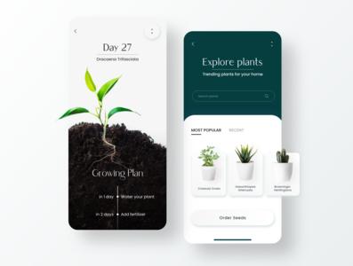 Plant Grow App Design plants typograhpy minimal ui mobile ui grow plant app