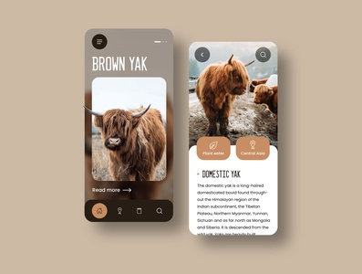 Brown Yak Mobile Design adobexd wiki travel outdoor mobile ui mobile app ui nature animal mobile