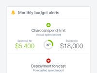 Budget alerts mobile
