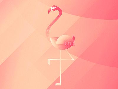 Gustav, the august flamingo. illustration animals flamingo