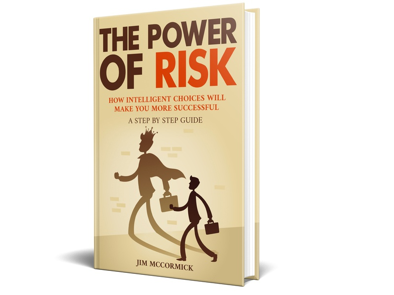The power of risk Book cover