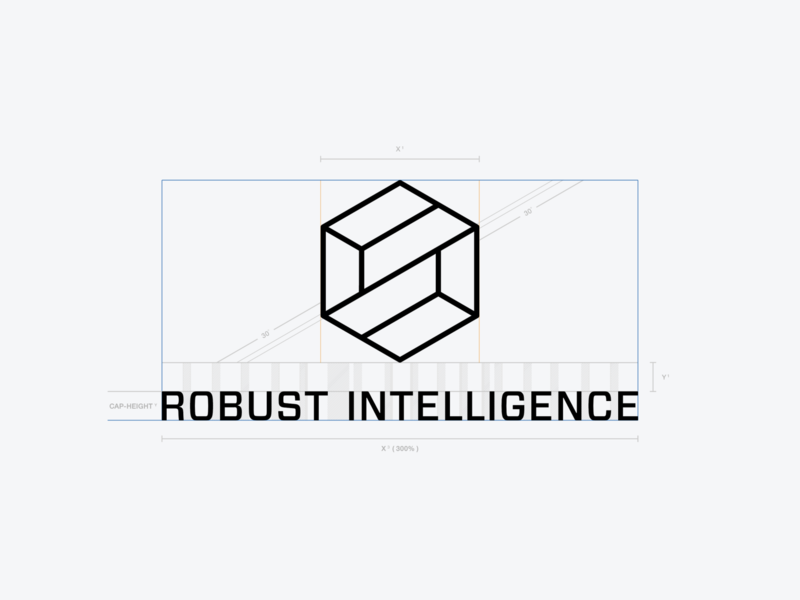 Robust Intelligence - Brand Identity artificial intelligence thirtylogos startup forza mesh cybersecurity ai three.js