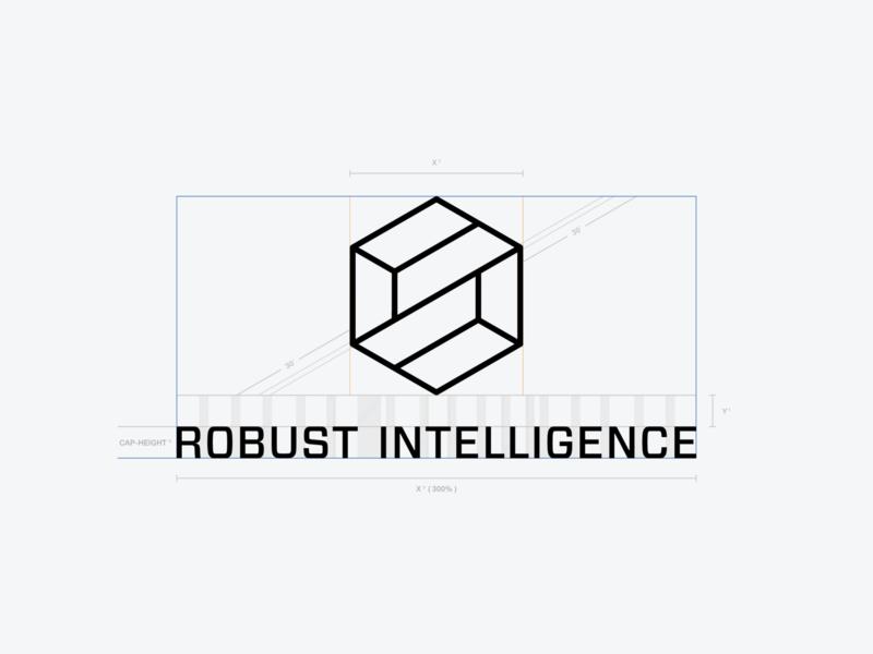 Robust Intelligence - Brand Identity artificial intelligence thirtylogos startup forza mesh cybersecurity ai three.js