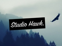 Studio Hawk logo