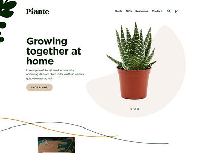 Piante Plants shopify store web design shopify website design ux website ui web design