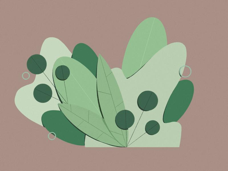 forest party art plants design graphic illustration procreate