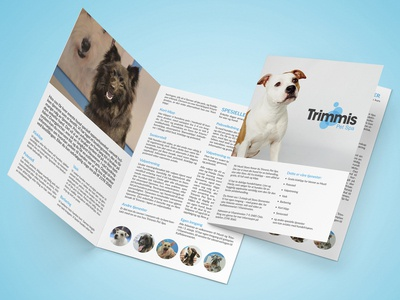 4-page brochure for pet spa