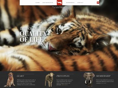 Humane Animal Website website oklahoma animals interactive bar promos cutouts photography minimal pattern