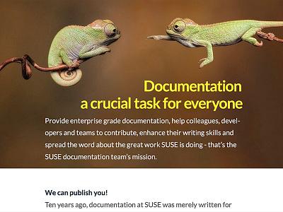 Karma Chameleon informatic computer documentation open source linux cover print geeko animal magazine chameleon