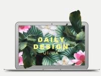 #00 DAILY DESIGN UI/UX