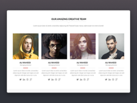 Team section form Nifty – Multi Purpose PSD Template